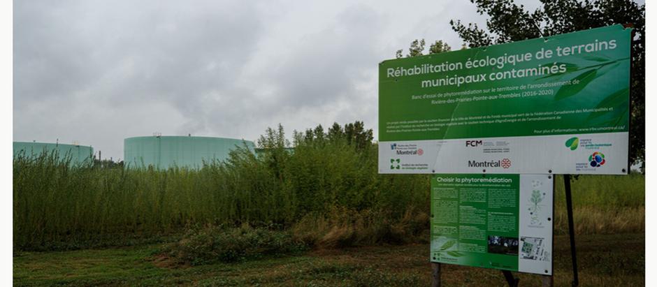Les sols contaminés du Québec en Ontario