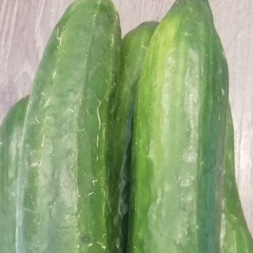 Okurky salátovky