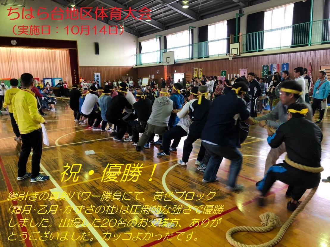 体育祭(綱引き)