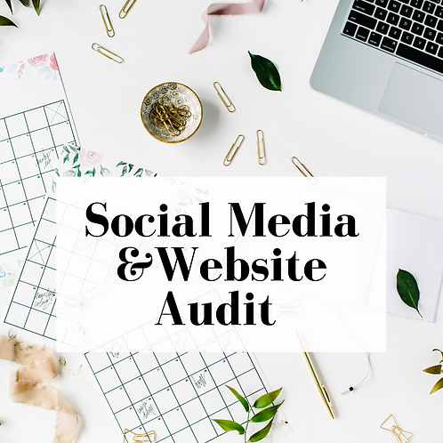 Website and Social Media Audit