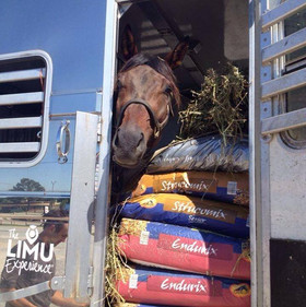 Tate on his way to Bromont