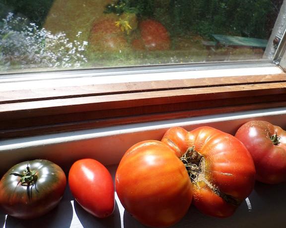 Heirloom Vegetables – the Unbroken Chain