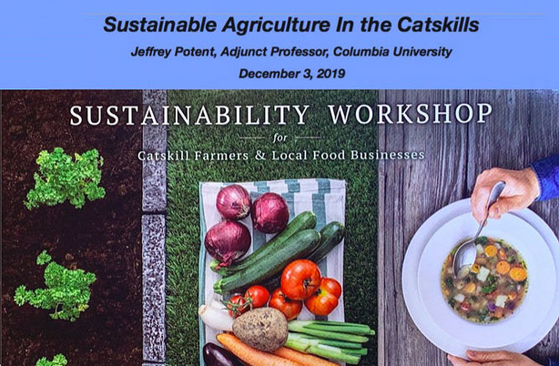 Jeff Potent: Sustainability Workshop introduction