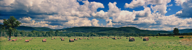 Welcome to Transition Catskills!