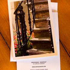 Descending ~ Savannah Greeting Card
