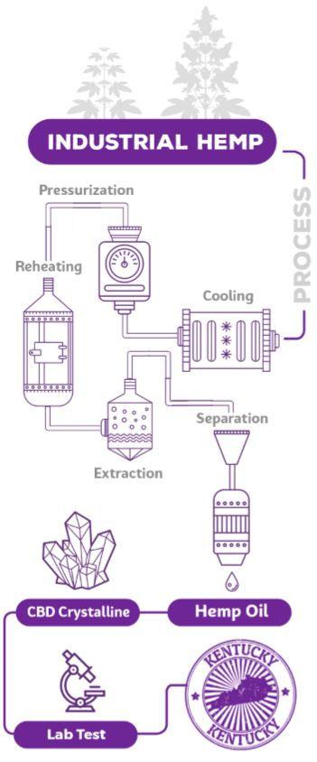 Hemp Process.JPG