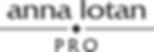 anna-lotan-pro-logo-1024x344.png