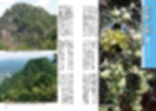 信州の里山トレッキング「京ヶ倉1」