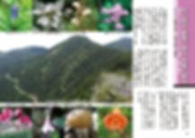 水ノ塔山・東篭ノ登山・西篭ノ登山1