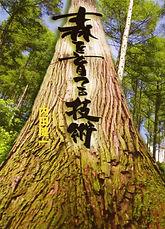 「森を育てる技術」表紙