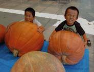かぼちゃと子供