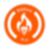 BibRavePro_Orange_Circle.png