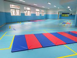 Gymnastic Term
