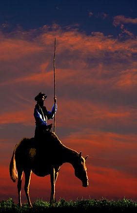 Quixote w sky 2019 final 11x17.jpg