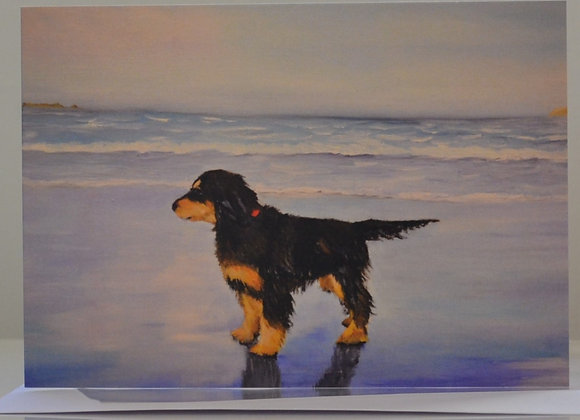 Young Cocker Spaniel on the beach,  greeting card