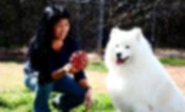 bark-n-purr-yard-01_0182-rgbcx-1000p.jpg