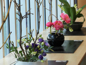 2019 Burnside Japanese Cultural Day on Sat, 29 June バーンサイド・ジャパニーズ・カルチャルデー6月29日(土)