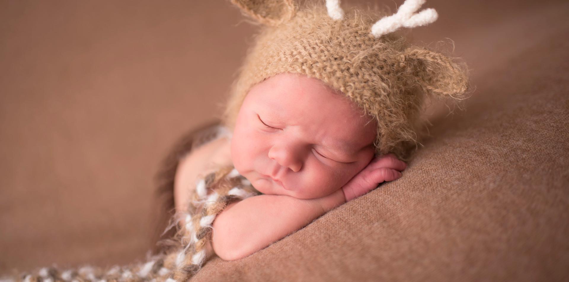 Baby deer newborn