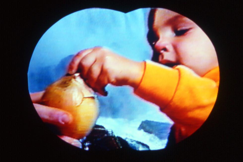 Onion Skins 1997
