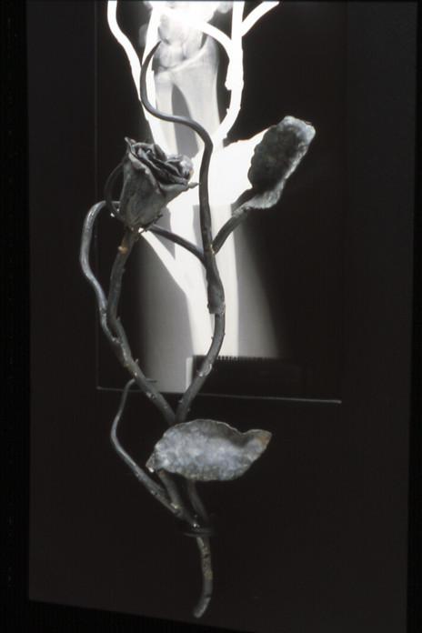 Stigmata 1992