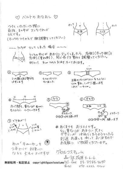 belt_web.jpg