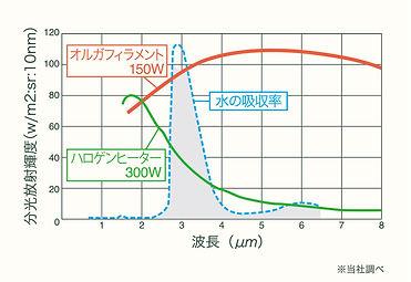 info_ラジカル2.jpg