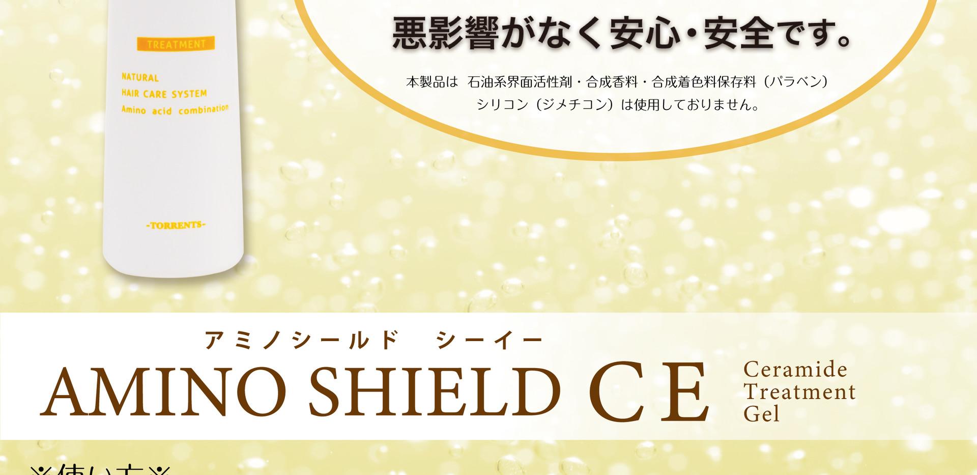 A4_CE_使い方_H31年Ver.jpg