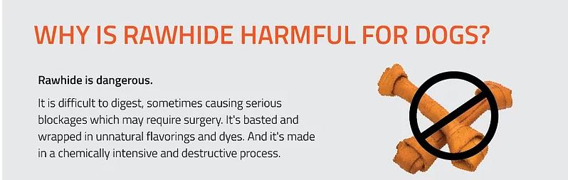 http://www.porkchomps.com/dangers-of-rawhide