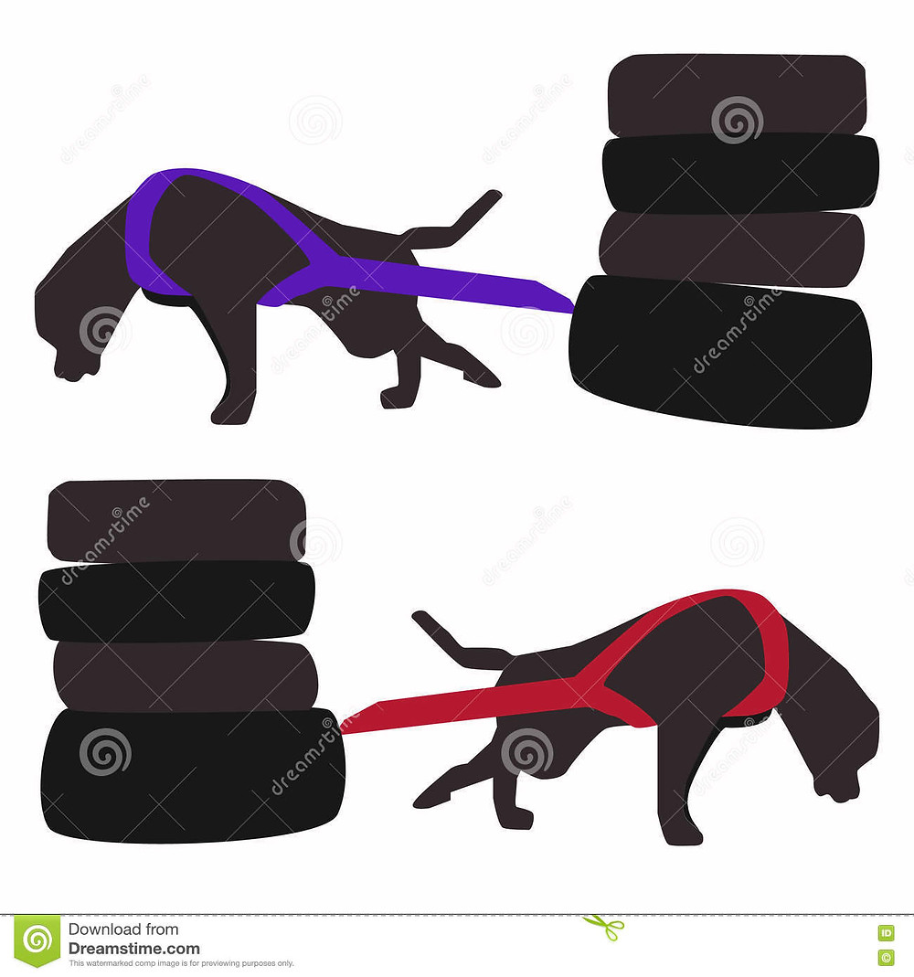 image credit: https://www.dreamstime.com/stock-illustration-dog-pulling-vector-illustration-training-weight-sport-harness-pulls-hard-weight-dogs-image82235915