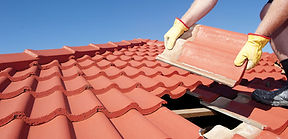 Painting, Building, Roof Structure and Ceiling, Renovations