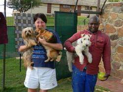 Pretoria Dog Kennels