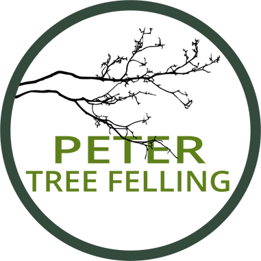 Peter Tree Felling Logo by PlacesAndPrices