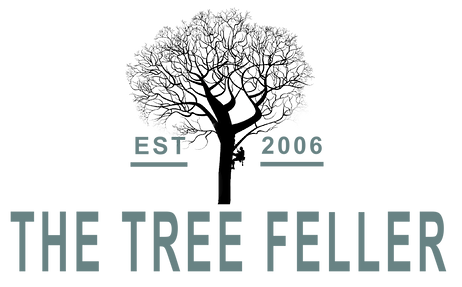 The Tree Feller Logo by PlacesAndPrices