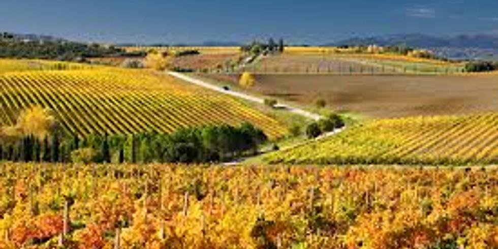 Virtual Friuli & Tuscany Maremma Zoom Wine Dinner Event