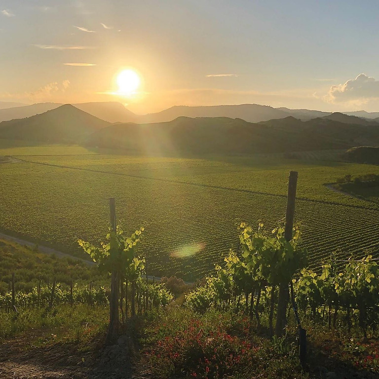 Calabria Zoom Wine Dinner Event with Guest Speaker Marcello Palazzi