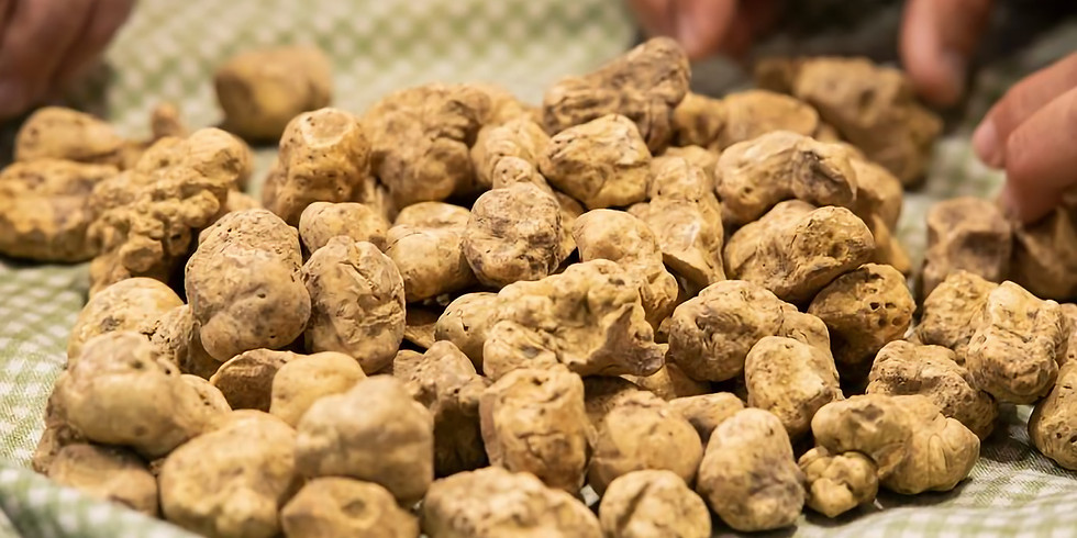 SOLD OUT Virtual Piedmont 2 Wine Dinner Event: Truffle Festival!