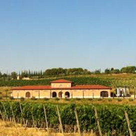 Montepulciano Tuscany Zoom Wine Dinner Event with Guest Speaker Andrea Cragnotti from Italy