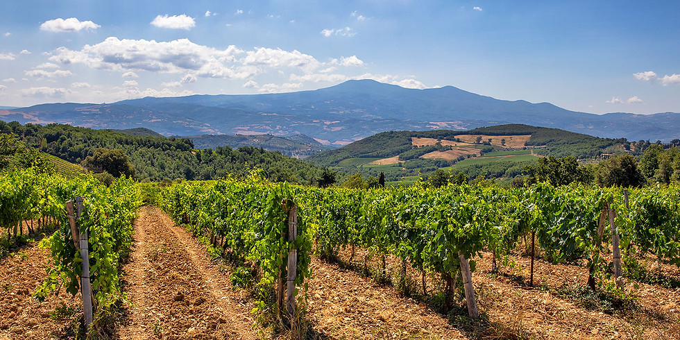 SOLD OUT Virtual Tuscany Wine Dinner Event: Exploring More Tuscan Gems