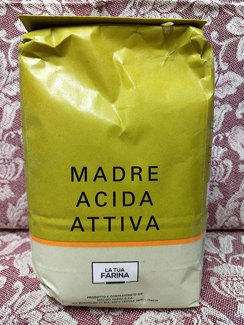La Tua Farina Madre Acida Attiva - Sourdough Starter