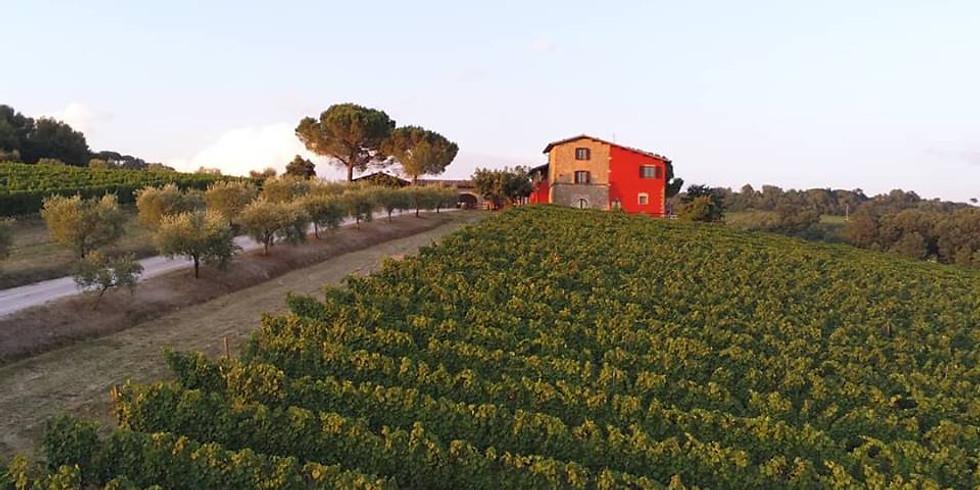 Umbria Terre Margaritelli Wine Dinner Theatre Event with Eugenio Picchiani