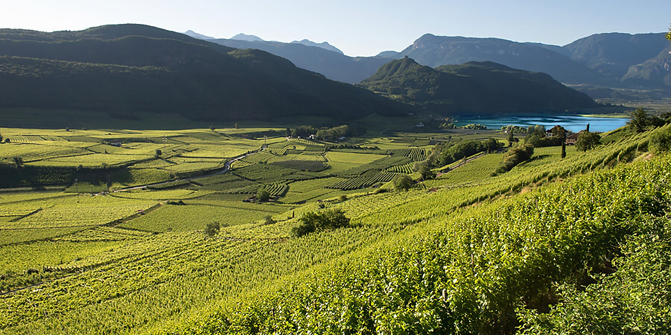 Alto Adige Zoom Wine Dinner Event with Guest Speakers from Italy! (1)