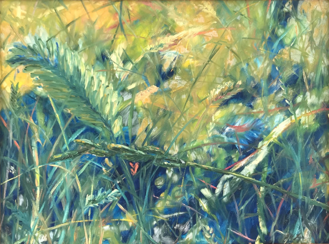 Grasses and Bugs