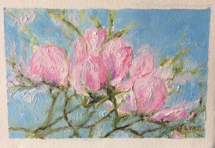 Linda's Spring Buds