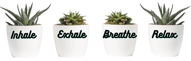 Inhale-removebg-preview_edited.png
