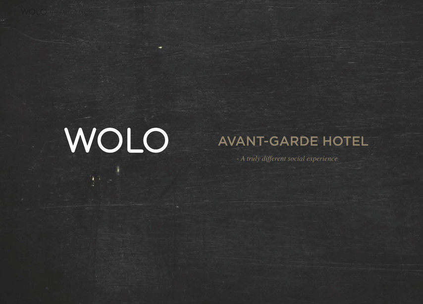 17- wolo brand Brand Facets_Page_7.jpg