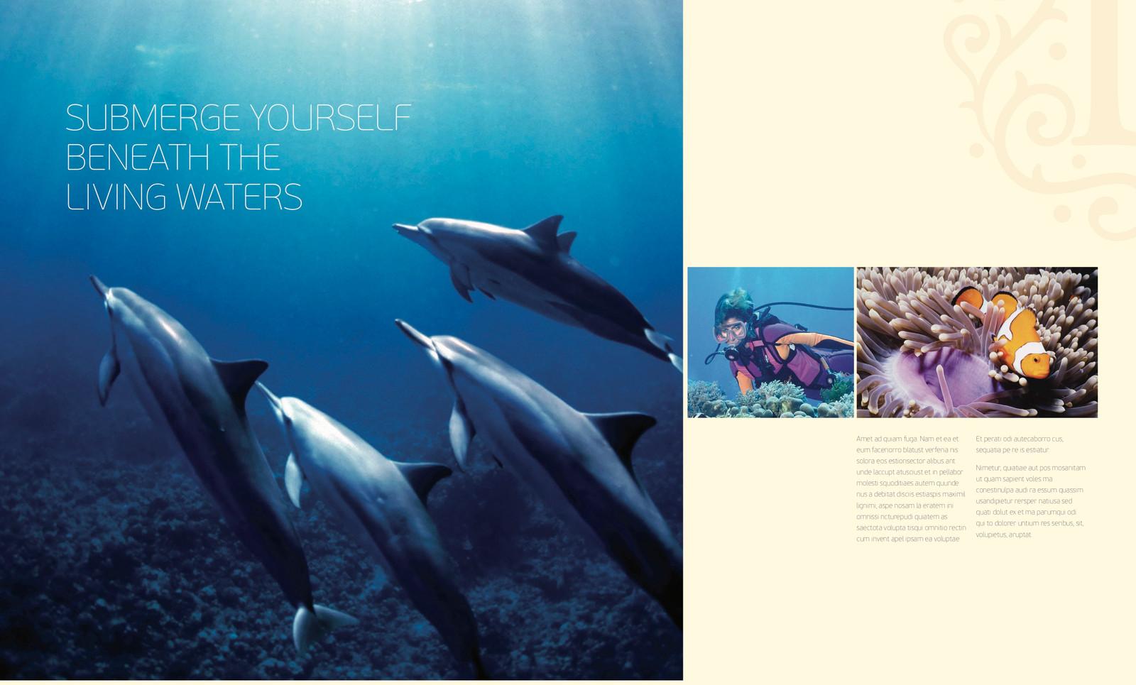 7: Loama Brochure7.jpg
