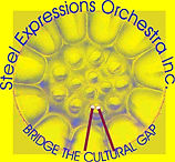 Steel Expressions Logo