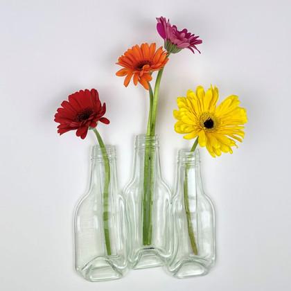 trio_clear_bottle_vase_remake3_edited.jp