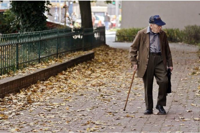 older adults cognitive/mental health