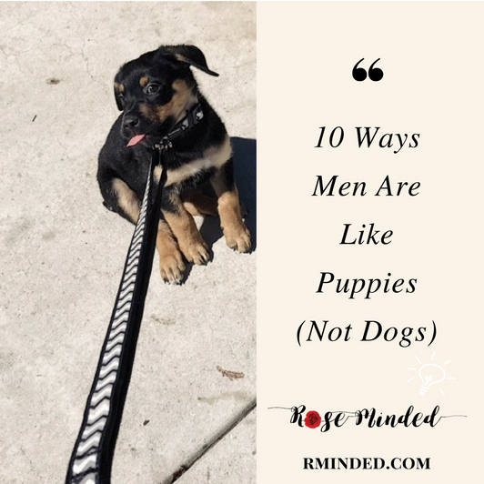 10 Ways Men Are Like Puppies (Not Dogs)